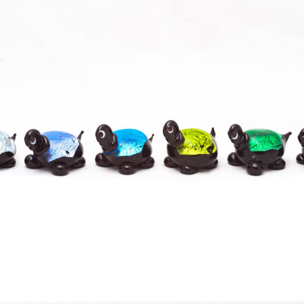 Set tartarughe